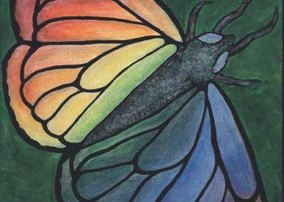 aileen-butterfly